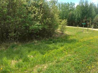 Photo 3: 11 Crystal Keys: Rural Wetaskiwin County Rural Land/Vacant Lot for sale : MLS®# E4247527