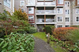 "Photo 16: 112 5700 ANDREWS Road in Richmond: Steveston South Condo for sale in ""RIVER REACH"" : MLS®# R2012319"