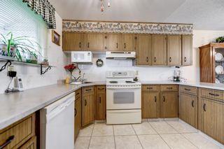 Photo 11: 13324 63 Street in Edmonton: Zone 02 House for sale : MLS®# E4256894