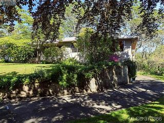 Photo 9: 3505 James Hts in VICTORIA: SE Cedar Hill House for sale (Saanich East)  : MLS®# 759789