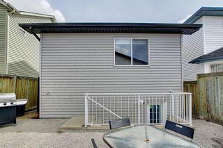 Photo 41: 87 Taravista Street NE in Calgary: Taradale Detached for sale : MLS®# A1084185
