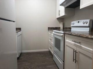 "Photo 6: 213 17661 58A Avenue in Surrey: Cloverdale BC Condo for sale in ""Wyndham Estates"" (Cloverdale)  : MLS®# R2455488"