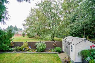 Photo 17: 7324 TODD Crescent in Surrey: East Newton House for sale : MLS®# R2404173