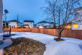 Photo 41: 232 Coral Shores Court NE in Calgary: Coral Springs Detached for sale : MLS®# A1081911