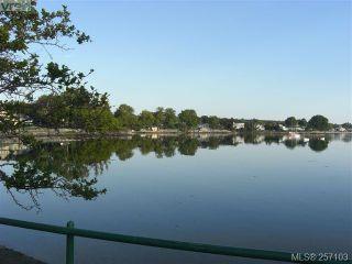 Photo 4: 101 1148 Goodwin St in VICTORIA: OB South Oak Bay Condo for sale (Oak Bay)  : MLS®# 490596