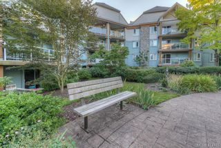 Photo 27: 309 490 Marsett Pl in VICTORIA: SW Royal Oak Condo for sale (Saanich West)  : MLS®# 822080