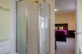 Photo 31: 167 DOUGLAS GLEN Manor SE in Calgary: Douglasdale/Glen Detached for sale : MLS®# A1026145