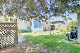 Photo 33: 2618 46 Street SE in Calgary: Forest Lawn Detached for sale : MLS®# A1146875