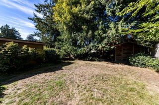 Photo 4: 428 W 28TH Street in North Vancouver: Upper Lonsdale House for sale : MLS®# R2616370