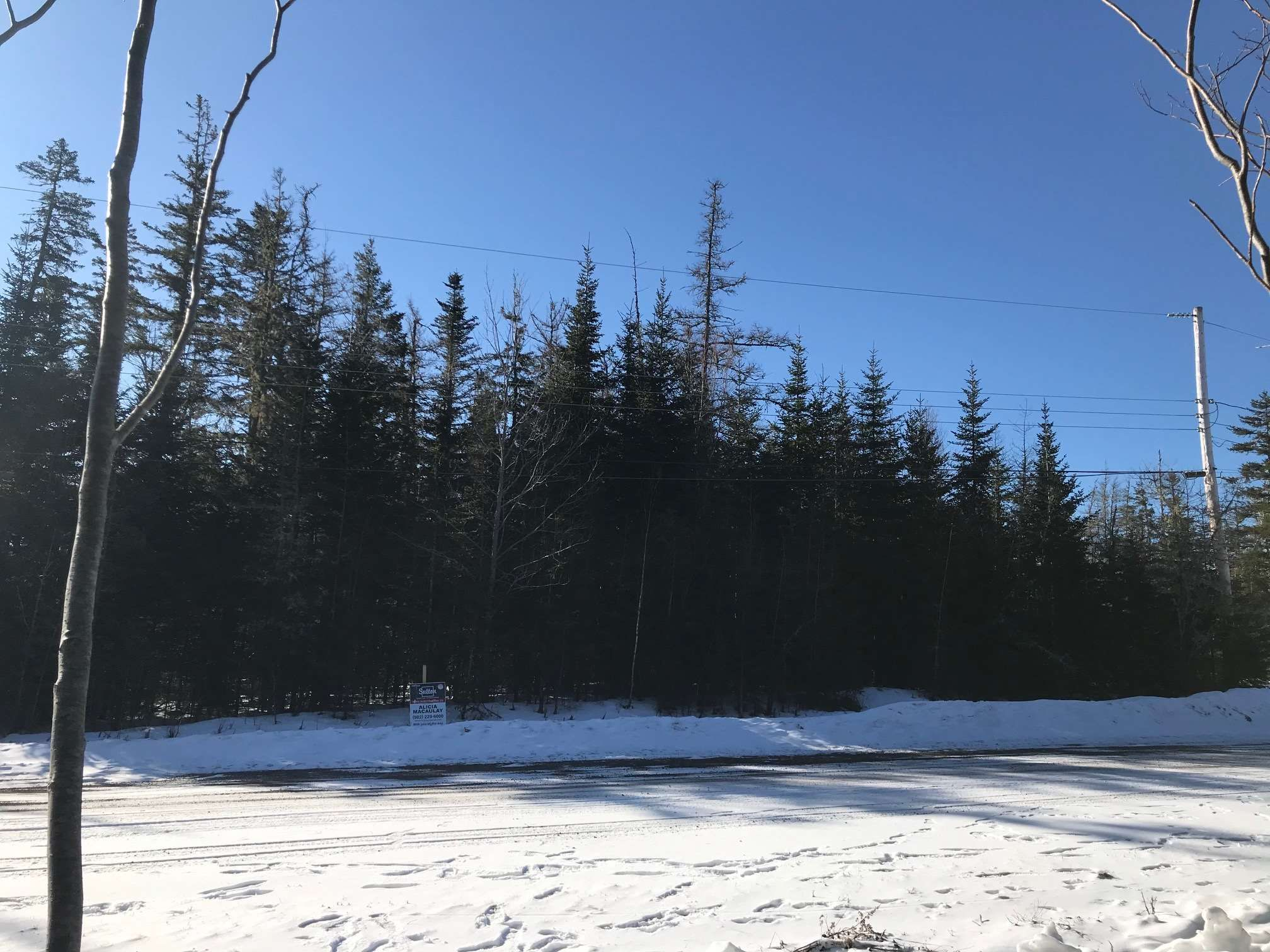 Main Photo: Lot 13 Jerad Road in Harmony: 104-Truro/Bible Hill/Brookfield Vacant Land for sale (Northern Region)  : MLS®# 202105307
