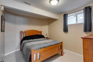 Photo 36: 87 Douglasview Road SE in Calgary: Douglasdale/Glen Detached for sale : MLS®# A1061965