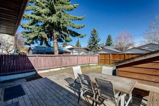 Photo 29: 11 Bedwood Place NE in Calgary: Beddington Heights Detached for sale : MLS®# A1118469