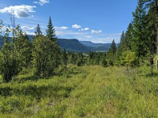 Photo 12: 455 Albers Road, in Lumby: Agriculture for sale : MLS®# 10235228