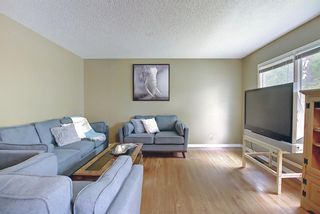 Photo 3: 1228 19 Street NE in Calgary: Mayland Heights Detached for sale : MLS®# A1118594