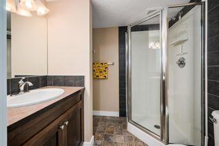 Photo 21: 215 Silverado Plains Close SW in Calgary: Silverado Detached for sale : MLS®# A1062465