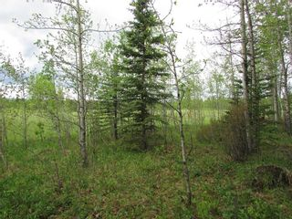 Photo 5: 103, 5227 TWP RD 320: Rural Mountain View County Land for sale : MLS®# C4299948