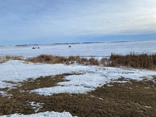 Photo 17: 162 Eagle Lake Place: Rural Wheatland County Detached for sale : MLS®# A1059399