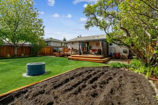 Photo 7: 8524 33 Avenue NW in Calgary: Bowness Detached for sale : MLS®# A1112879
