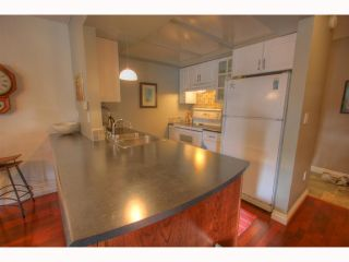 Photo 9: # 301 1790 W 11TH AV in Vancouver: Fairview VW Condo for sale (Vancouver West)  : MLS®# V819524