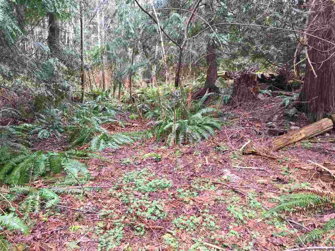 Main Photo: LOT D HEAL Road: Roberts Creek Land for sale (Sunshine Coast)  : MLS®# R2149518