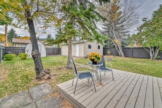 Photo 29: 8815 36 Avenue NW in Calgary: Bowness Detached for sale : MLS®# A1151045