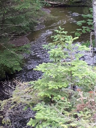 Photo 8: Meiklefield Road in Meiklefield: 108-Rural Pictou County Vacant Land for sale (Northern Region)  : MLS®# 202117504