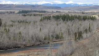 Photo 25: SE 35-20-2W5: Rural Foothills County Residential Land for sale : MLS®# A1101395