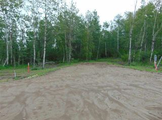 Photo 6: Lot 7 27331 Township Road 481: Rural Leduc County Rural Land/Vacant Lot for sale : MLS®# E4243091
