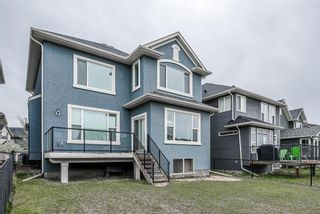 Photo 42: 57 CRANARCH Place SE in Calgary: Cranston Detached for sale : MLS®# A1112284