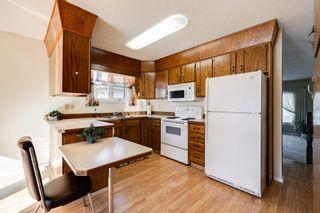 Photo 9: 101 WOODBINE Road: Sherwood Park House for sale : MLS®# E4253268