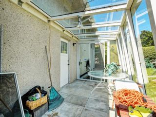 Photo 18: 3205 Carman St in : SE Camosun House for sale (Saanich East)  : MLS®# 878227