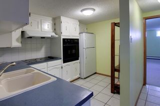 Photo 29: 4 Commerce Street NW in Calgary: Cambrian Heights Detached for sale : MLS®# A1103120