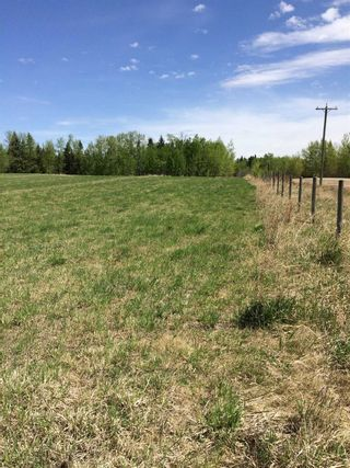 Photo 9: Twp 510 RR 33: Rural Leduc County Rural Land/Vacant Lot for sale : MLS®# E4239253