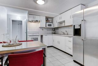 Photo 19: 3756 ULSTER Street in Port Coquitlam: Oxford Heights House for sale : MLS®# R2584347