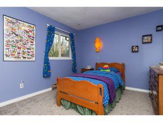 Photo 28: 10111 LAWSON DRIVE in Richmond: Steveston North House for sale : MLS®# R2042320