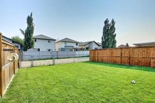 Photo 17: 419 Stonegate Rise NW: Airdrie Semi Detached for sale : MLS®# A1131256