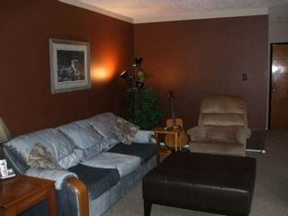 Photo 2: 882 STEWART AVE in COURTENAY: Other for sale : MLS®# 273091