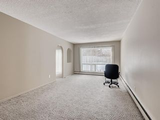 Photo 10: 101 6919 Elbow Drive SW in Calgary: Kelvin Grove Apartment for sale : MLS®# A1052867