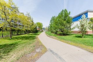 Photo 32: 206 10909 103 Avenue in Edmonton: Zone 12 Condo for sale : MLS®# E4246160