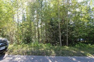 Photo 1: Lot 90 Birch Close: Land Only for sale : MLS®# 10071170