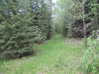 Photo 45: 351035A Range Road 61: Rural Clearwater County Detached for sale : MLS®# C4297657