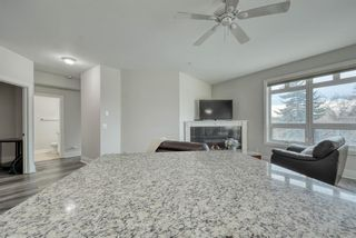 Photo 14: 302 2 14 Street NW in Calgary: Hillhurst Apartment for sale : MLS®# A1145344