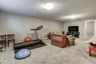 Photo 19: 27 Havenfield: Carstairs Detached for sale : MLS®# A1103516