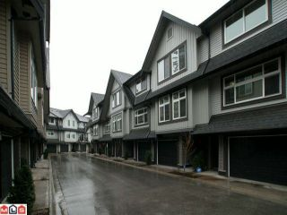 """Photo 1: 14 15192 62A Avenue in Surrey: Sullivan Station Townhouse for sale in """"ST. JAMES GATE"""" : MLS®# F1104157"""