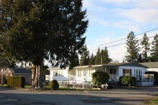 "Photo 1: 12 4426 232 Street in Langley: Salmon River Manufactured Home for sale in ""Westfield Courts"" : MLS®# R2530457"