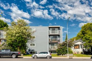Photo 16: 401 2203 14 Street SW in Calgary: Bankview Apartment for sale : MLS®# A1138034