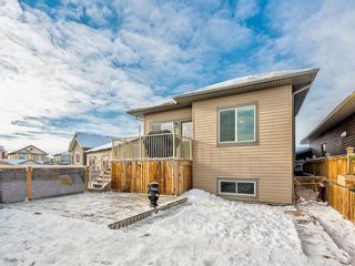 Photo 33: 238 RANCH Downs: Strathmore Detached for sale : MLS®# A1067410