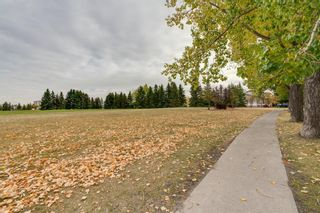 Photo 28: 151 Millrise Drive SW in Calgary: Millrise Detached for sale : MLS®# A1037985