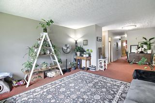 Photo 20: 3224 14 Street NW in Calgary: Rosemont Duplex for sale : MLS®# A1123509