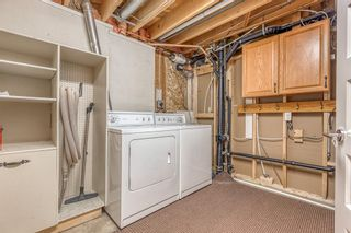 Photo 30: 531 99 Avenue SE in Calgary: Willow Park Detached for sale : MLS®# A1019885